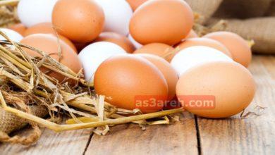 صورة أسعار البيض اليوم فى مصر